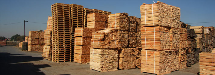 Wooden Planks Johannesburg - All About Wooden