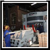 Storti | FLEX 51/52 pallet manufacturing machine